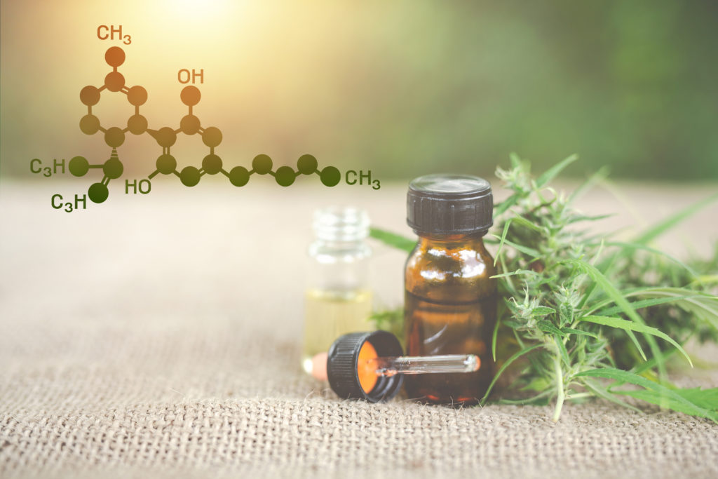 CBD Oil - What you need to know