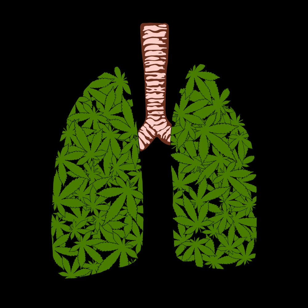 Cannabis in lungs