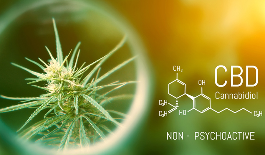 CBD And Mental Health - What You Need To Know